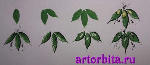 Поэтапное рисование листьев рисунок